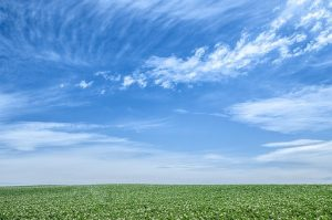 blue-sky-1348634__340