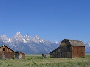 ranch-718419__340